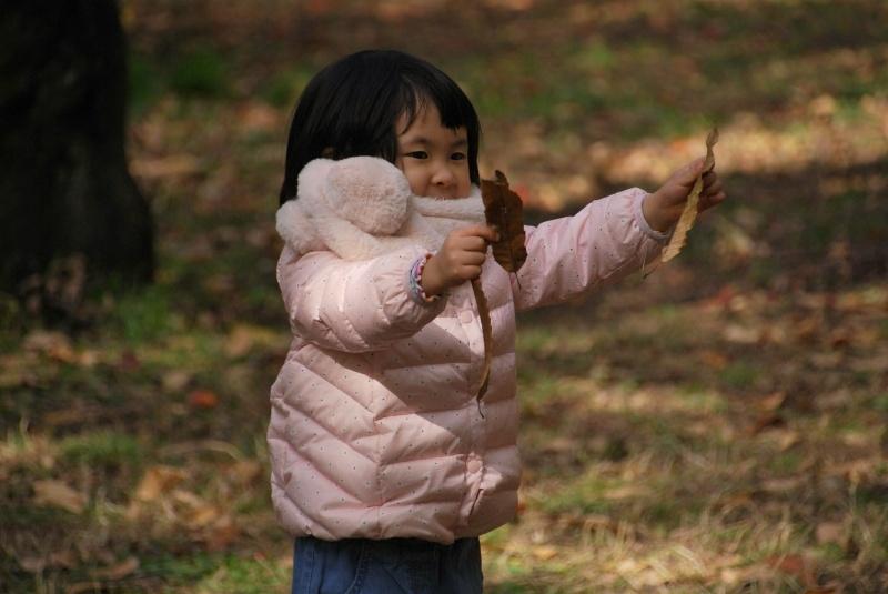 ☆20181125⑥04宝さがし雑木林6の1