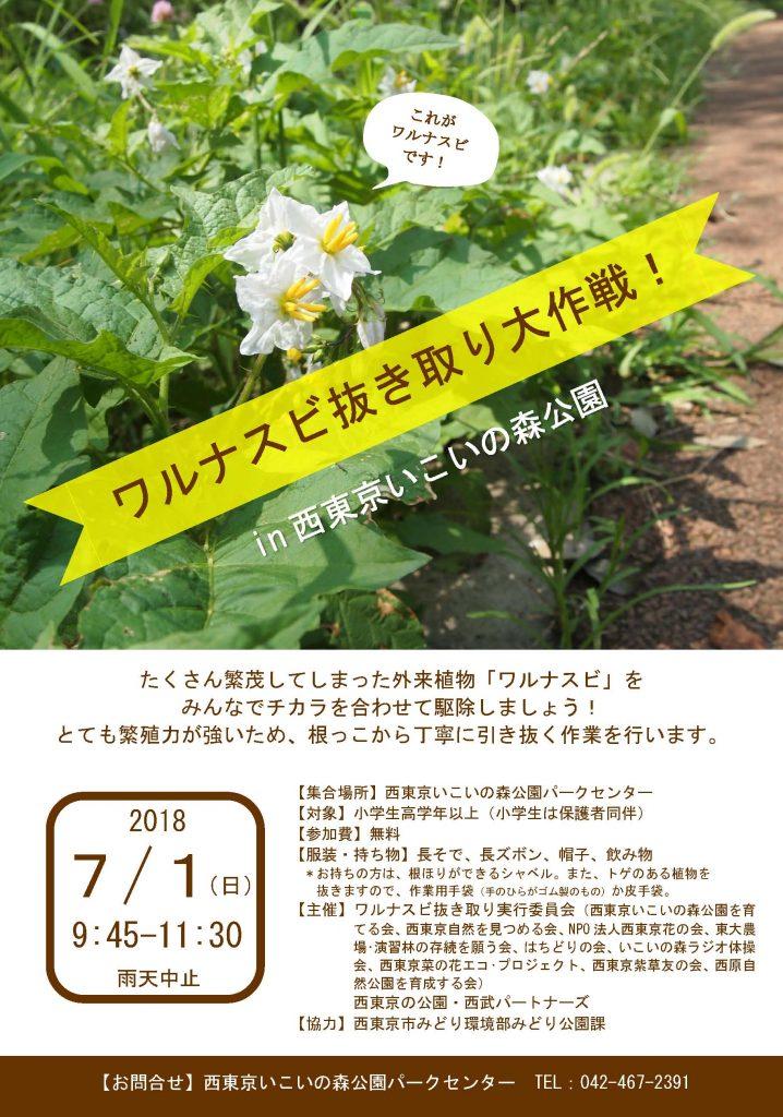【チラシ】20180701_ワルナスビ抜き取り大作戦